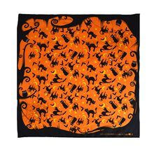 Picture of Black Cat Orange Bandana
