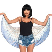 Picture of Egyptian Goddess Wings