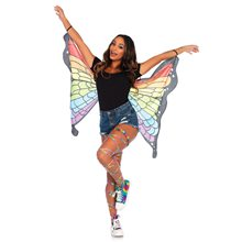Picture of Rainbow Butterfly Wings