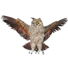 Picture of Brown Owl with Open Wings
