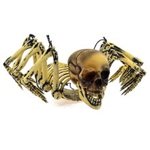 Picture of Distressed Hybrid Human Spider Skeleton Prop