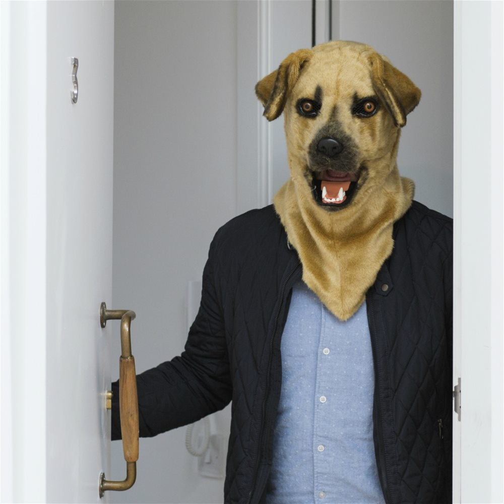 Picture of Mr. Dog Furry Mask