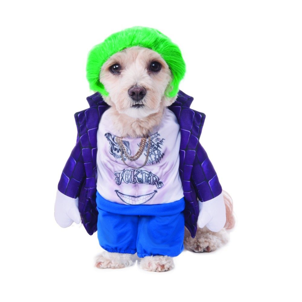 Picture of Suicide Squad The Joker Pet Costume