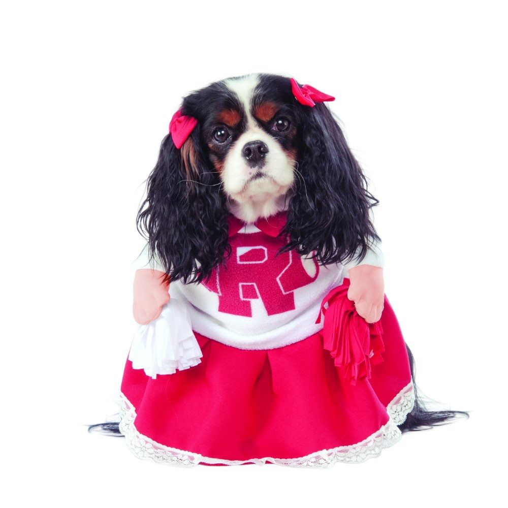 Picture of Grease Rydell High Cheerleader Pet Costume