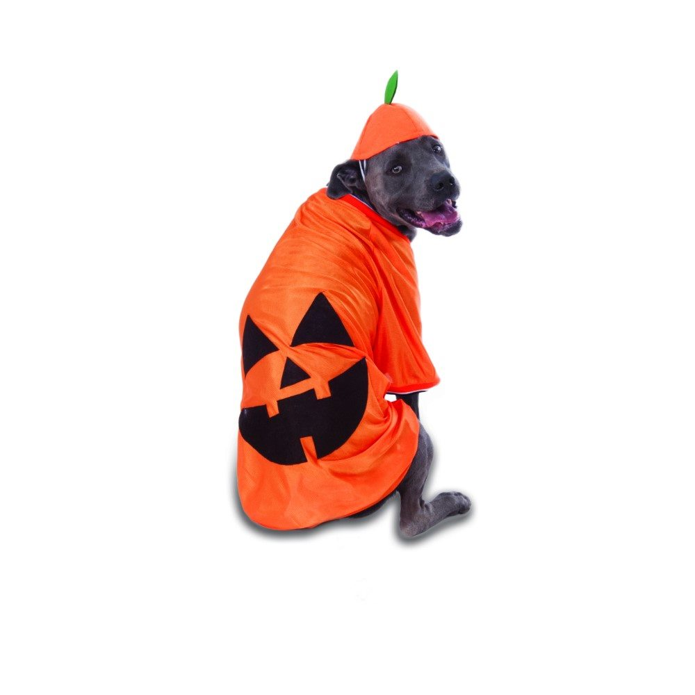 Picture of Big Dog Pumpkin Pet Costume
