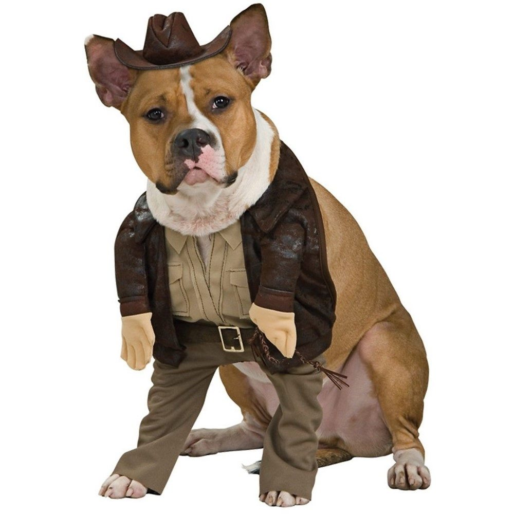 Picture of Indiana Jones Pet Costume