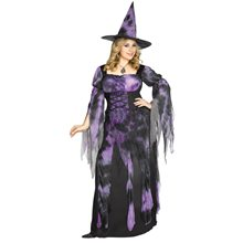 Picture of Starlight Witch Adult Womens Plus Size Costume