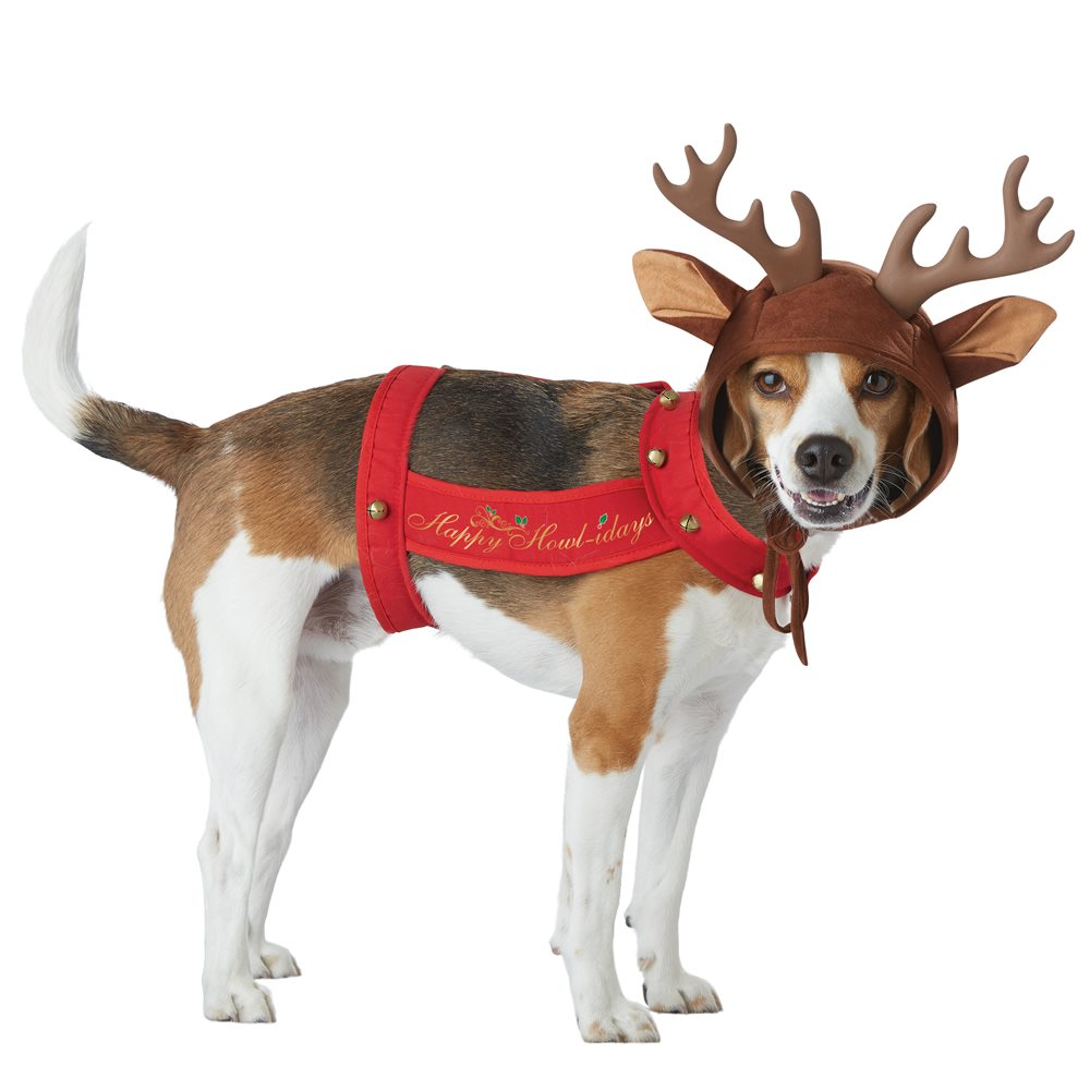 Picture of Reindeer Pup Pet Costume