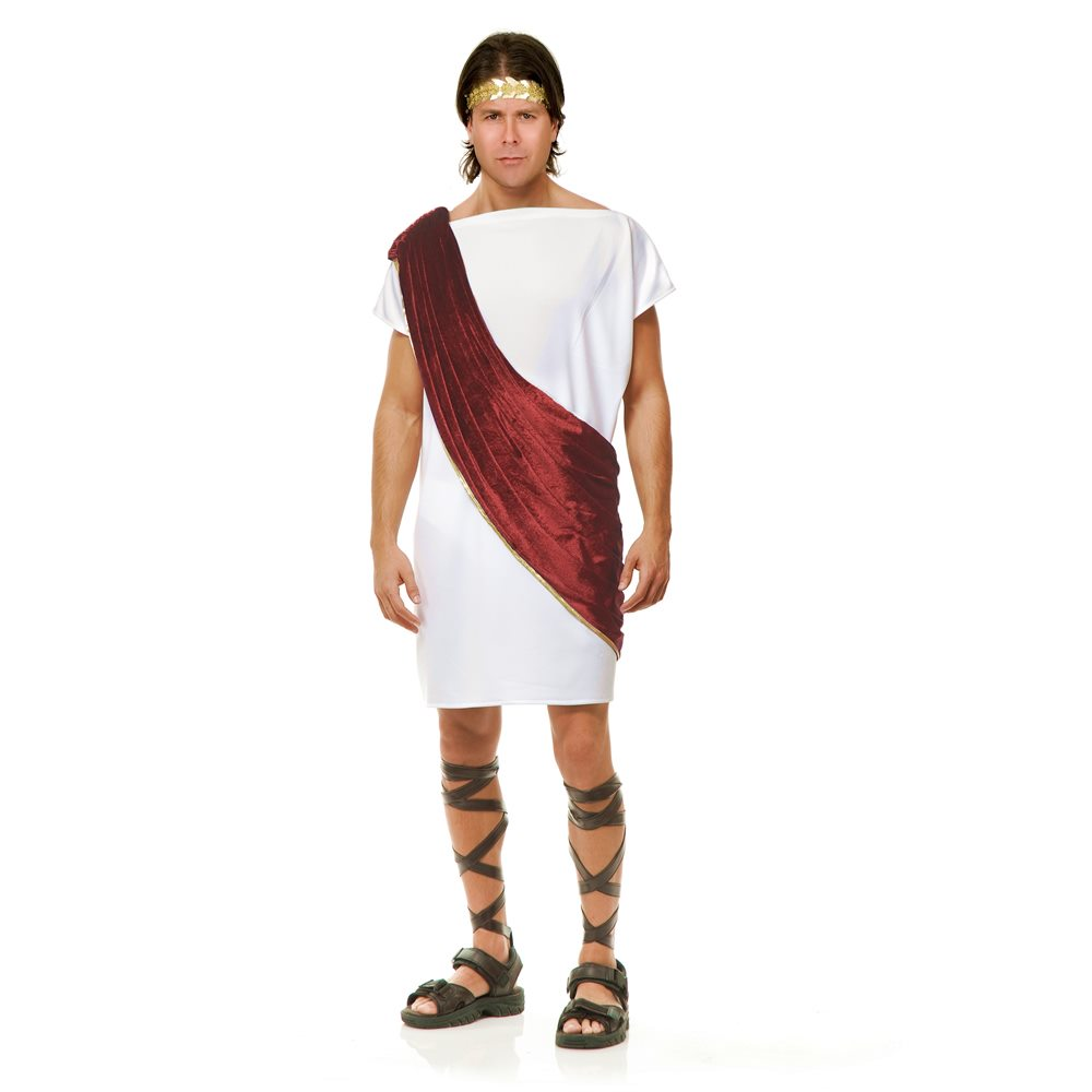 Picture of White & Wine Toga Man Teen Costume