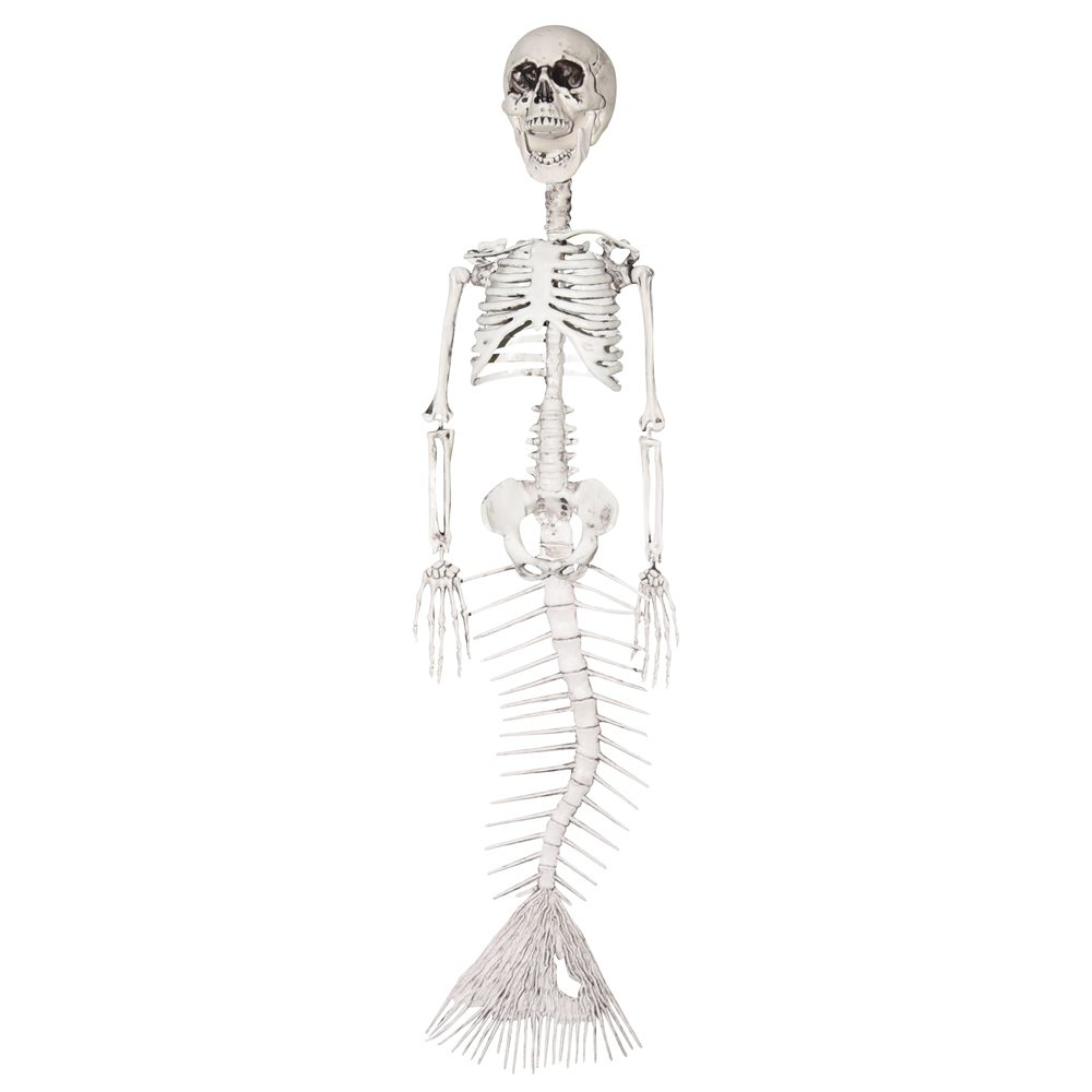 Picture of Mermaid Skeleton Prop 30in