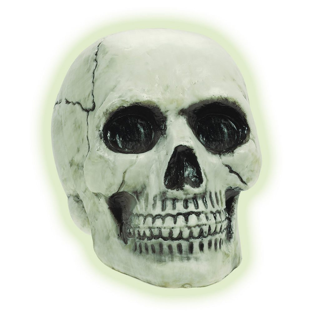 Picture of Glow in the Dark Plastic Skull 8in