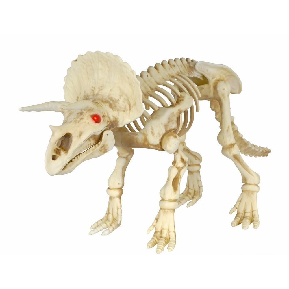 Picture of Triceratops Skeleton Prop 3ft