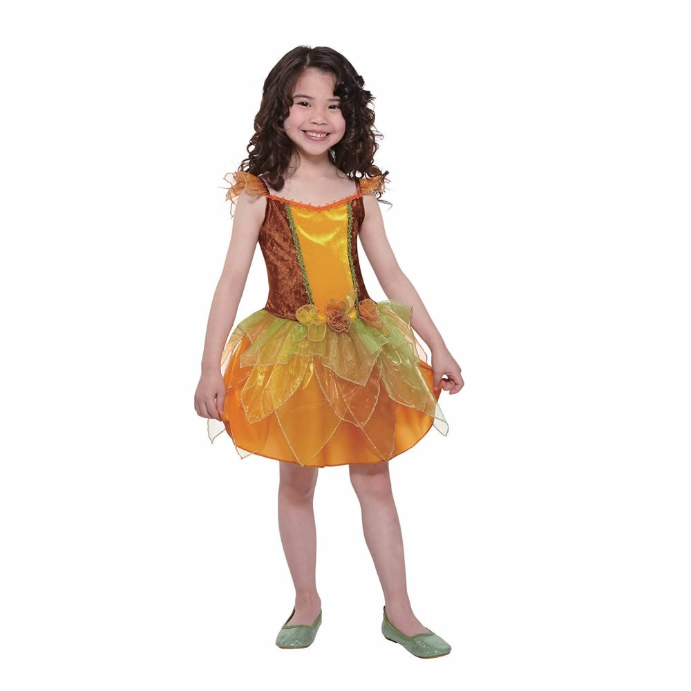 Picture of Autumn Fairy Dress Child Costume