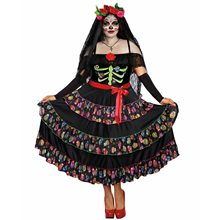 Picture of Lady of the Dead Adult Womens Plus Size Costume