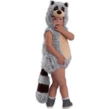 Picture of Ryder Raccoon Toddler Costume