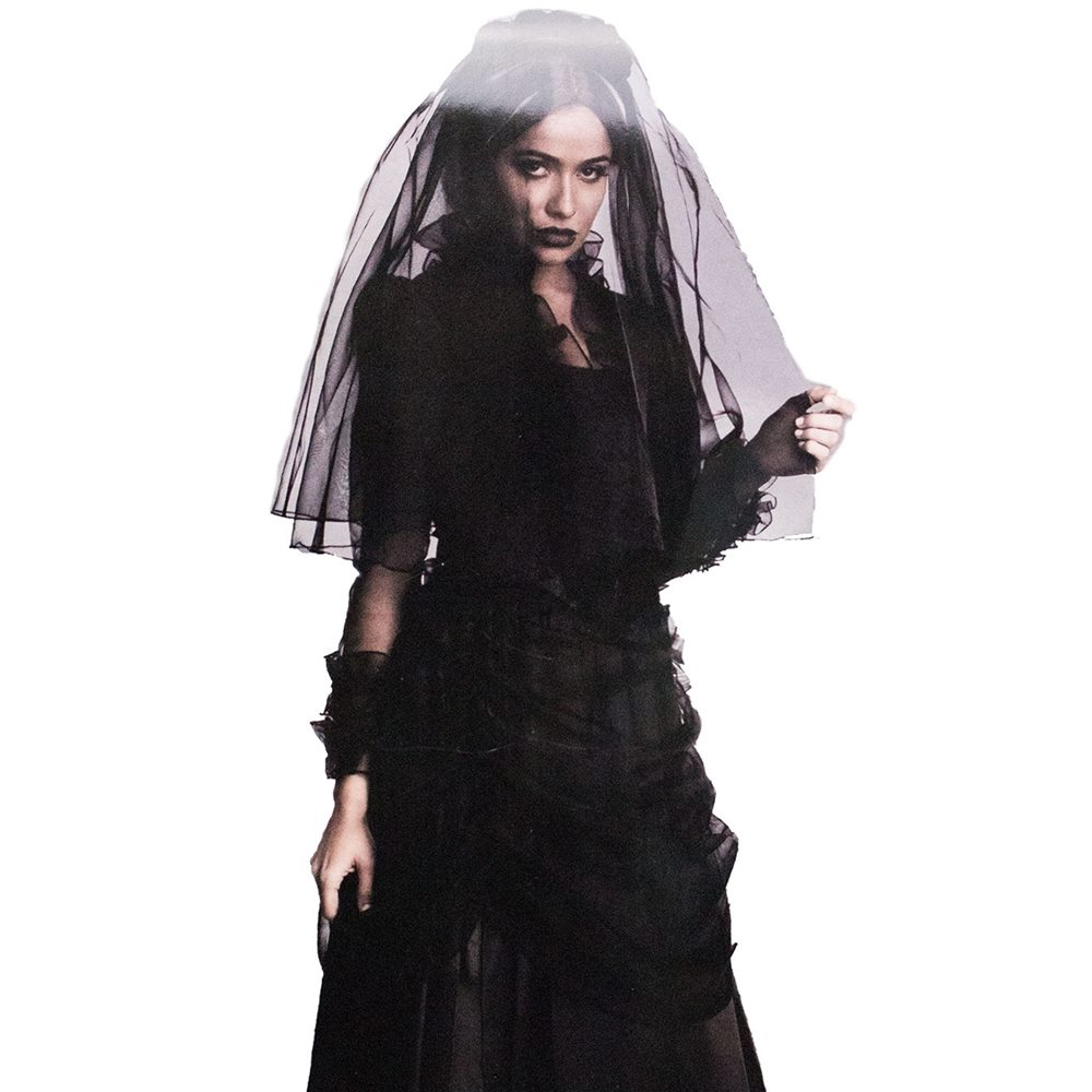 Picture of Gothic Dark Widow Adult Womens Costume