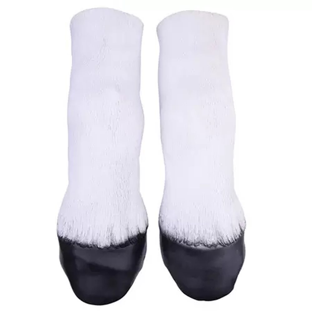 Picture of White Horse Hooves