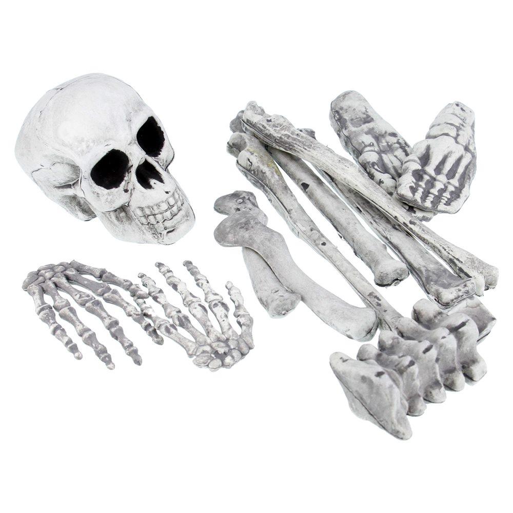 Picture of Bag of Bones 12ct