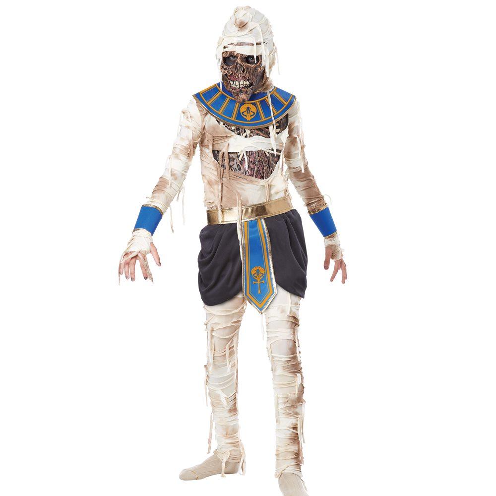 Picture of Mummy Pharaoh's Revenge Child Costume