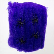 Picture of Purple Spiderweb